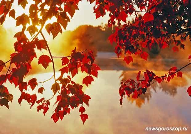 Осень, сентябрь, природа