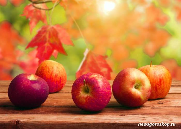 Сентябрь, яблоки, осень
