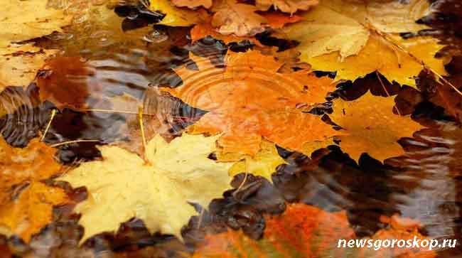 Октябрь, осень