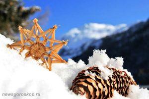 зима, декабрь, снег, шишка