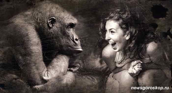 обезьяна, девушка, женщина