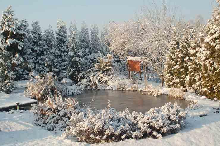 февраль, зима, озеро